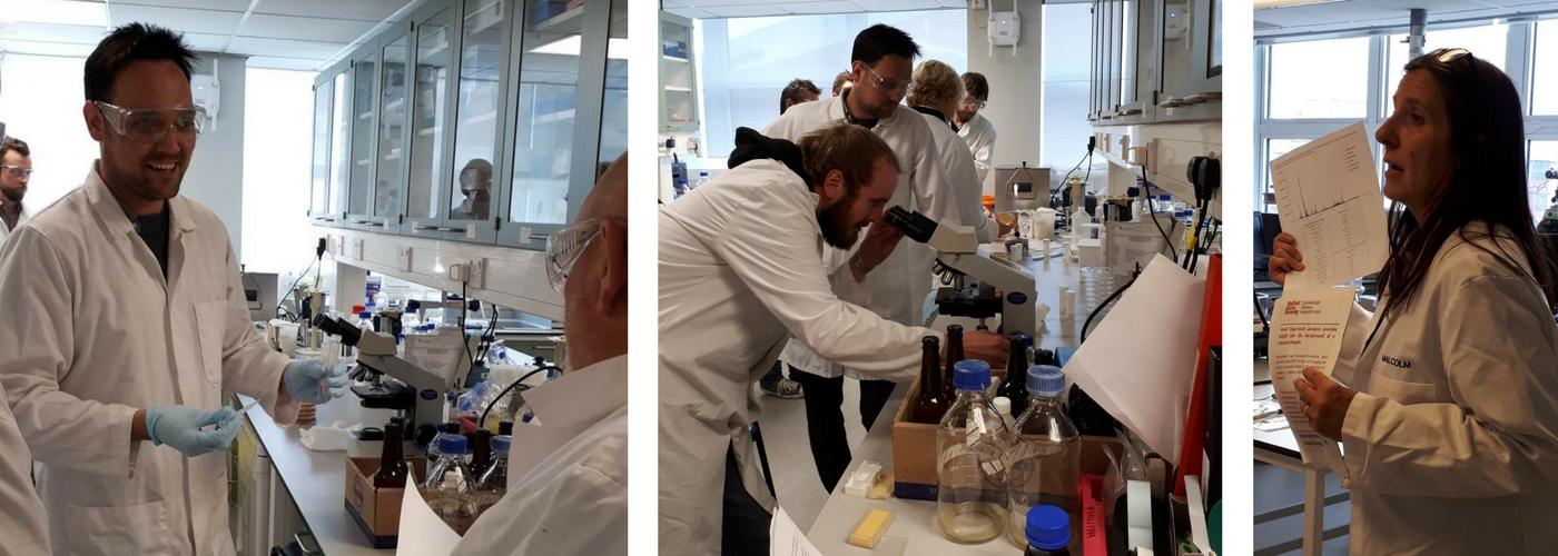 Microbiology_lab_demos